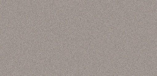 Decorative Panels CG22 Champagne Metallic