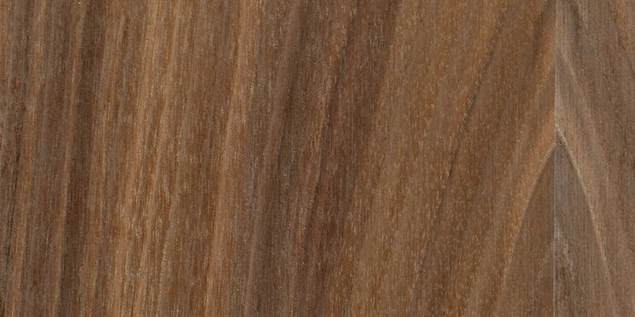 FSC® Certified American Black Walnut Flexible Veneer - Masterflex Un-Glued Flexible Veneer